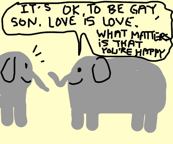 dad elephant accepts his gay son
