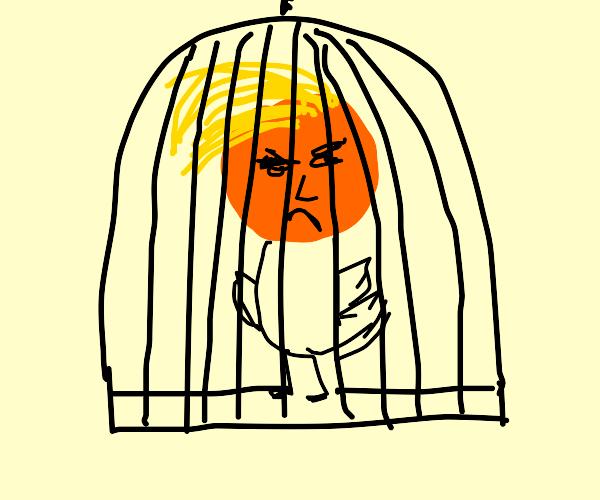 Trump as a caged bird