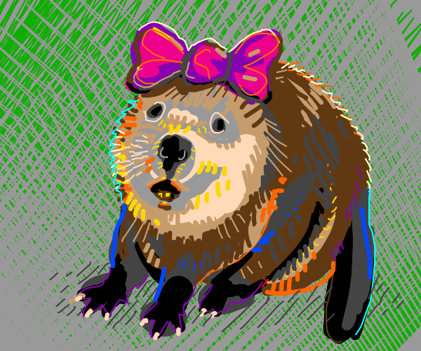 Bow On Beaver's Head