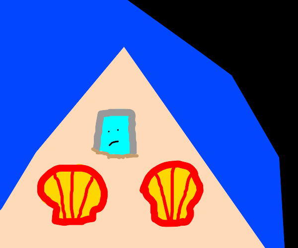 Seashells at the beach check their iPhone