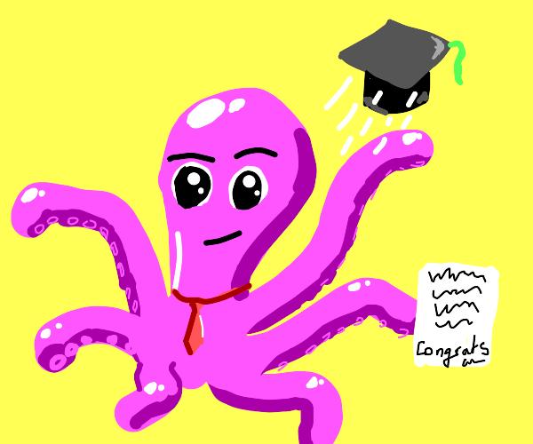 Octopus graduate