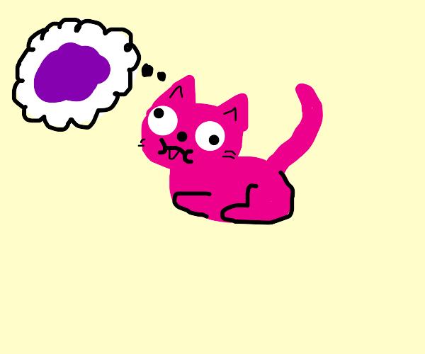 pink hairless cat trying to imagine purple sh