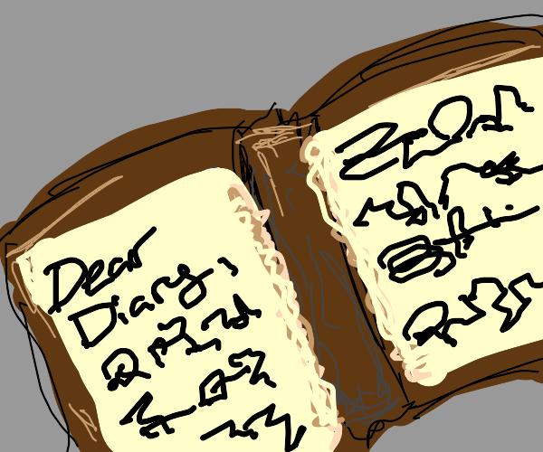 cryptic diary