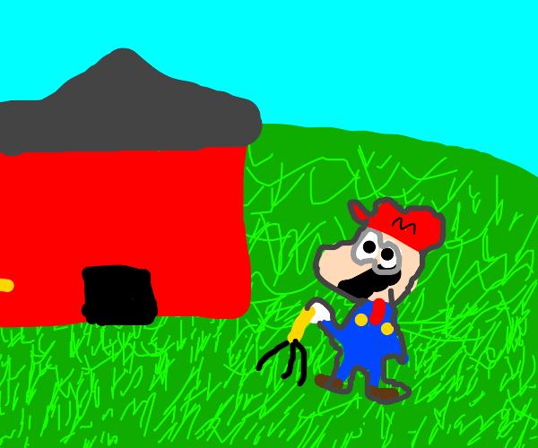 Mario owns a farm