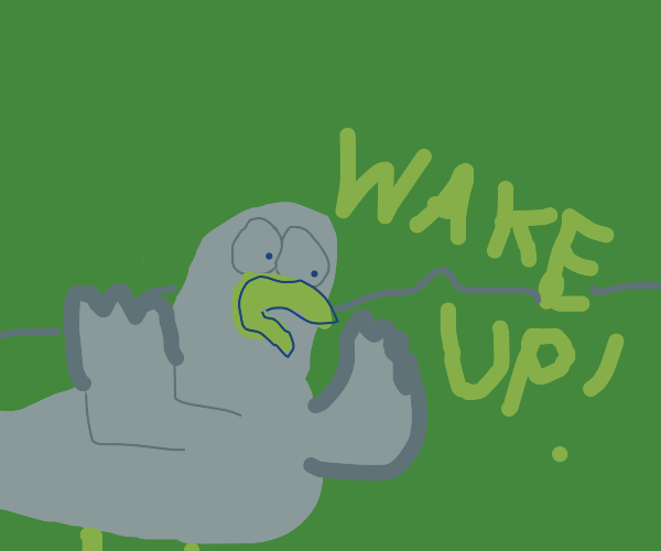 a duck telling a dude to wake up