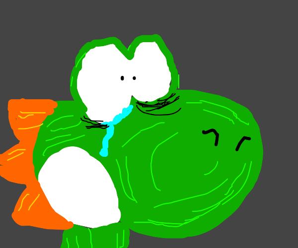 Yoshi is crying