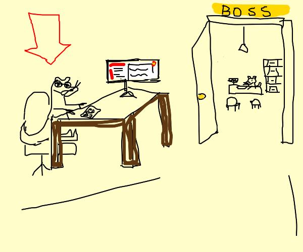 Ferret Secretary
