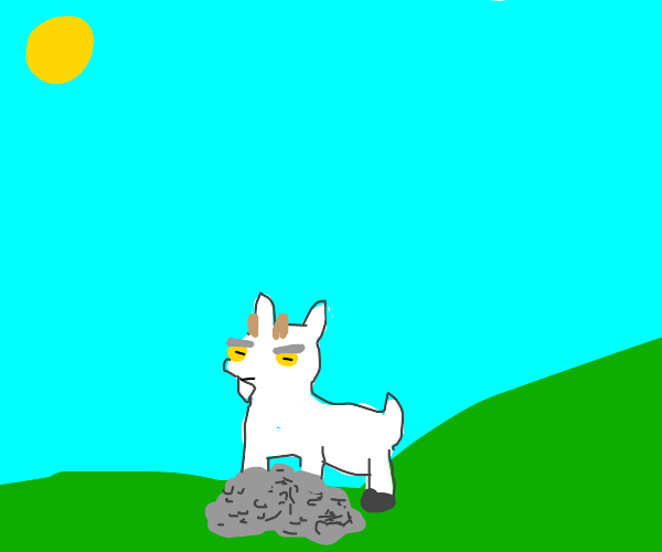 A goat standing over a puddle of pebbles