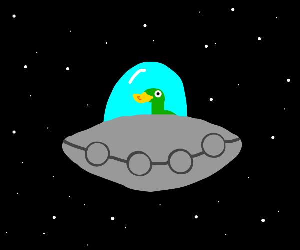 Duck in a spaceship