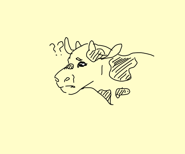 cow doesn't know anything