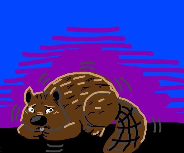 Shaking beaver