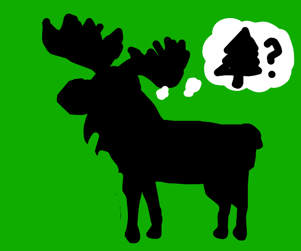 Moose wonders about the whereabouts of tree