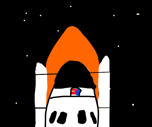 USA rocketship in space