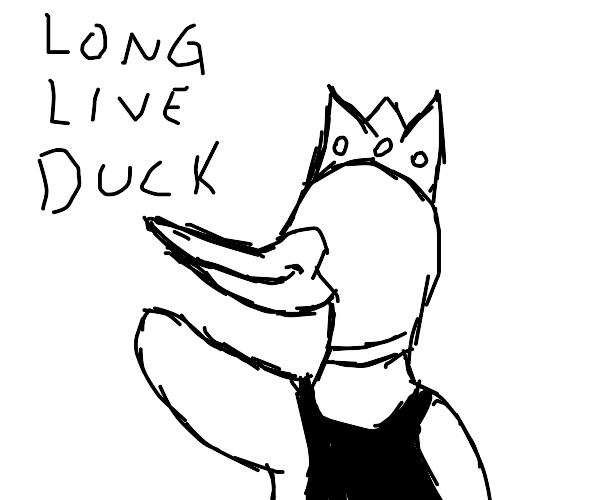 duck is king