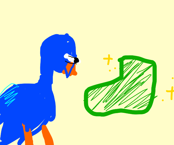 Bird stares angrily at snazzy green shoe
