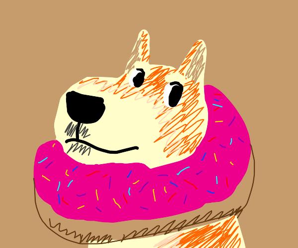 Doge in donut
