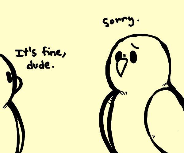 An Owl apologising