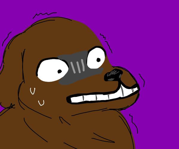 scared doggo