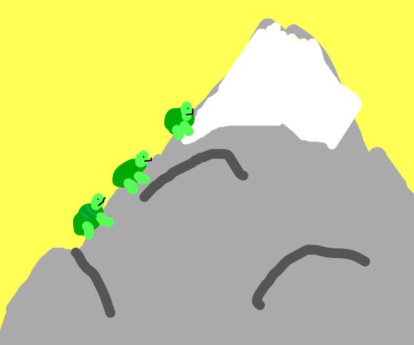 Turtles climbing up Mount Fuji