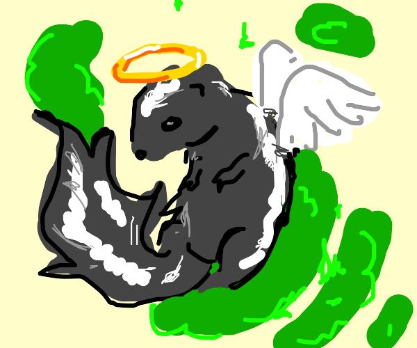 Skunk Angel