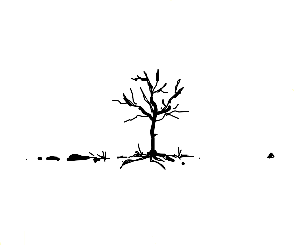 A Lonesome Tree