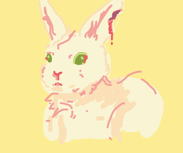 pink bunny bited in the ear