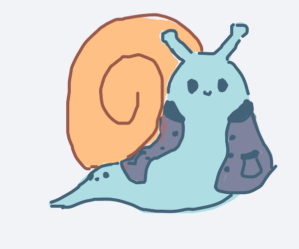 snail has a jacket