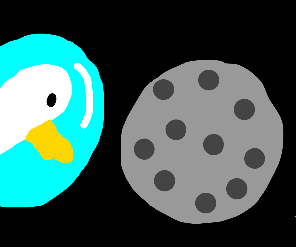 Duck and the moon