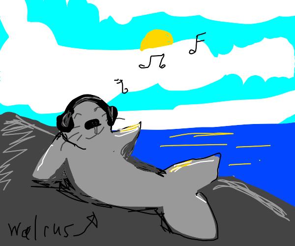 Walrus vibin' to some sweet tunes