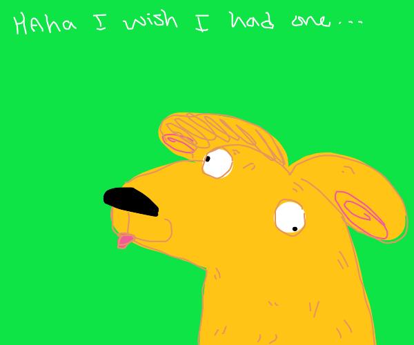 draw your dog pio