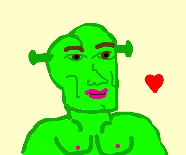 Our mighty lord and savior Shrek. SHREKKKKKKK