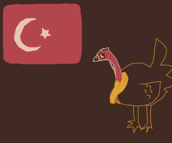 Turkey the Country and Turkey the bird