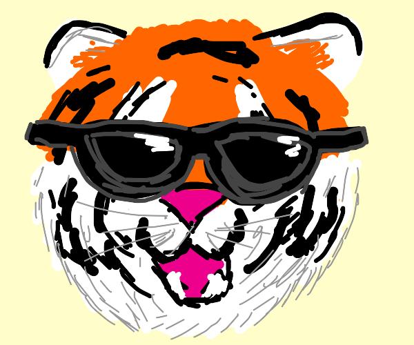 smug tiger