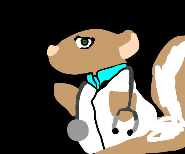 Dr. Squirrel