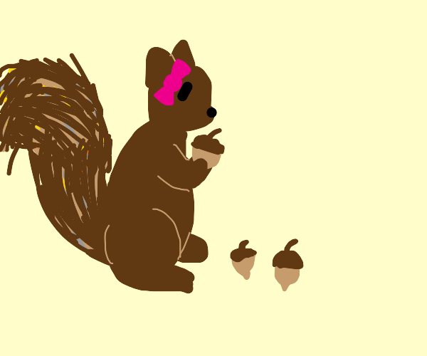 Lovely squirrel gathers acorns