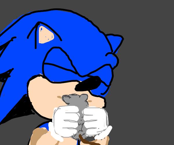 Sonic kisses a mouse