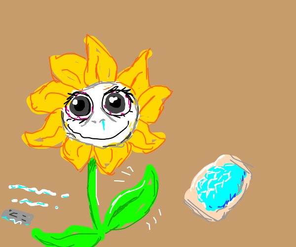 Female flower on meth waves