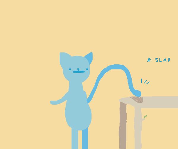 Blue kitty slaps table