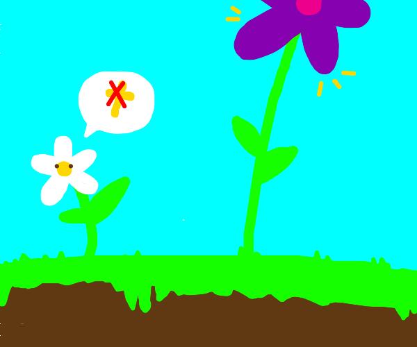 anti religion flower next to giant flower
