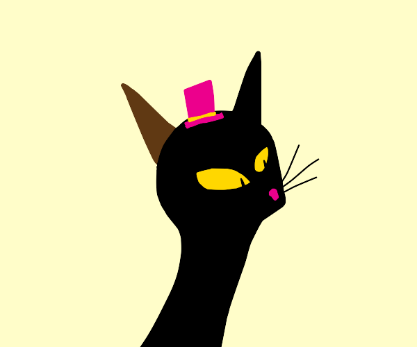 cat with brown cat ear hat on