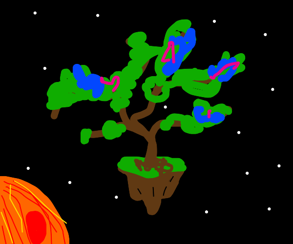 windy space tree