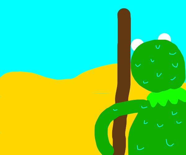 kermit the frog in the desert