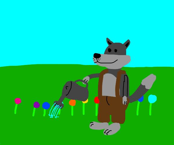 Wolf in overalls waters his flower garden