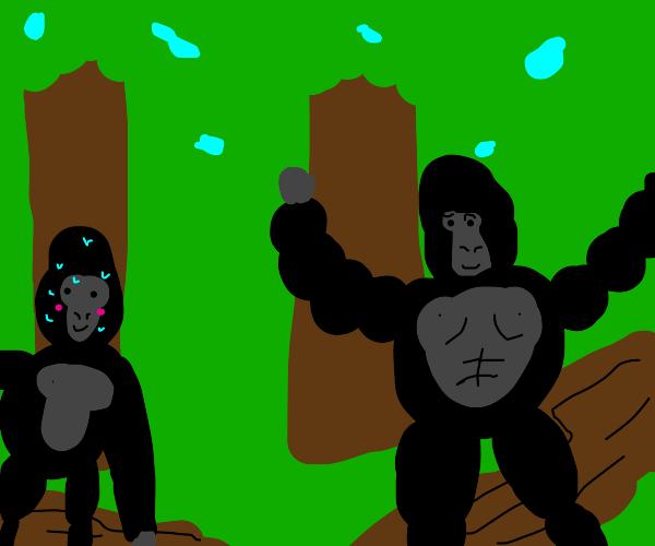 flustered gorilla