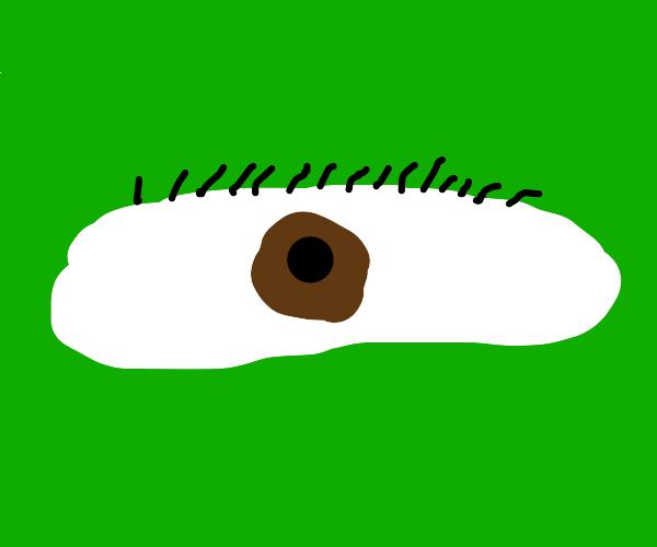 Shrek's eye