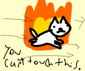 Cat on fire flying said you can't touch this