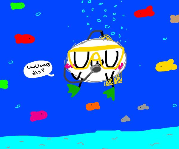 uwu face goes scuba diving