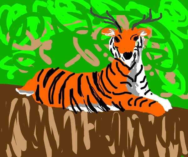 Tiger deer hybrid