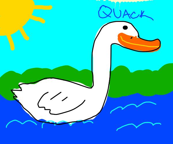 A duck masterpiece