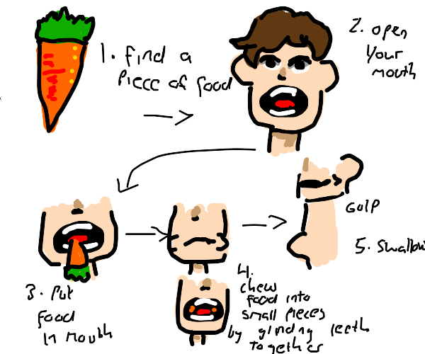 instructions on how to eat